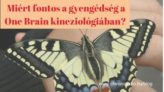 Miért fontos a gyengéd oldás a One Brain kineziológiában?