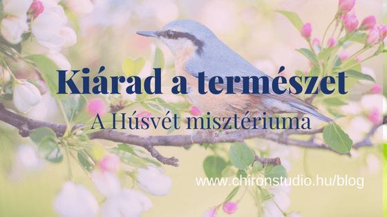 Kiárad a természet – A Húsvét misztériuma